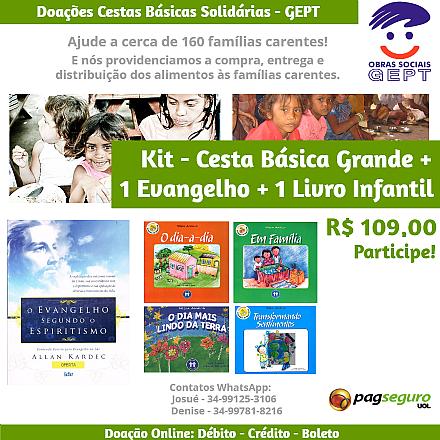 Doação Kit Cesta Básica Solidária Grande + 1 Evan + 1 Livro Infantil - GEPT