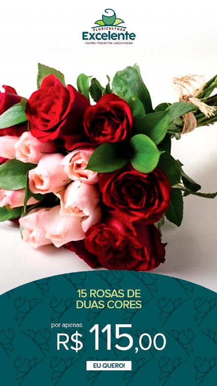 Buque de 15 rosas de duas cores