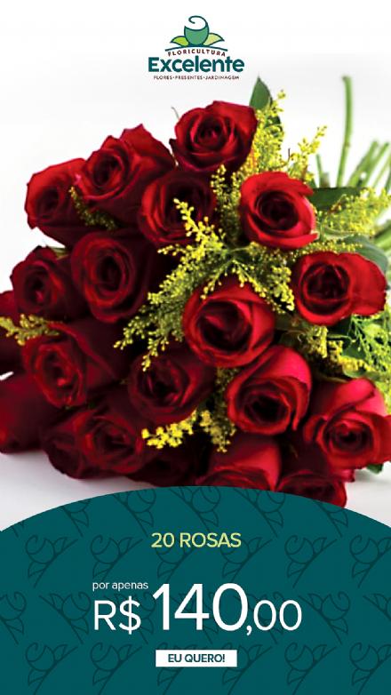Buque de 20 rosas vermelhas