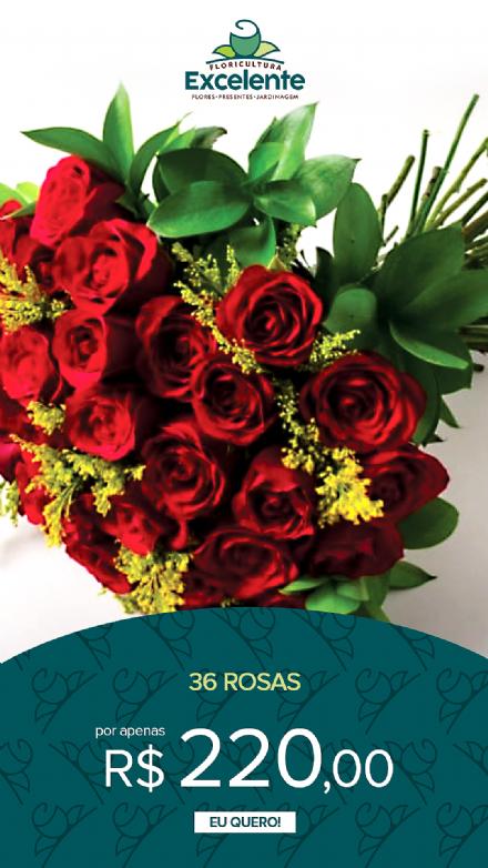 Buque de 36 rosas vermelhas