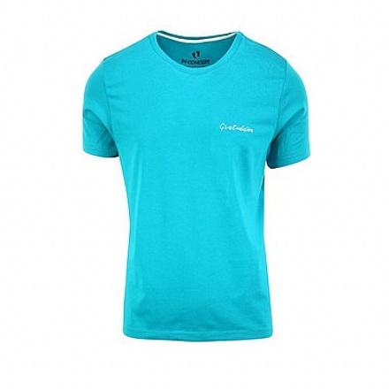Camiseta Masculina Gratidão Gola Canoa
